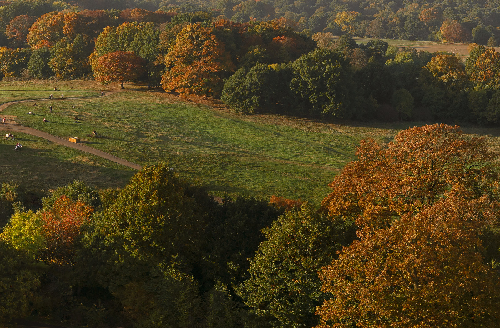 Aerial 360 Gigapixel: Hampstead Heath Autumn